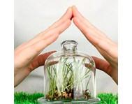 Засоби захисту рослин (81)